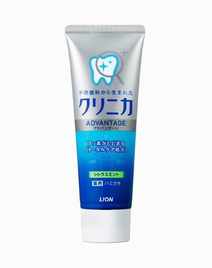 狮王狮王(Lion)齿力佳酵素洁净防护牙膏(草本薄荷)130g