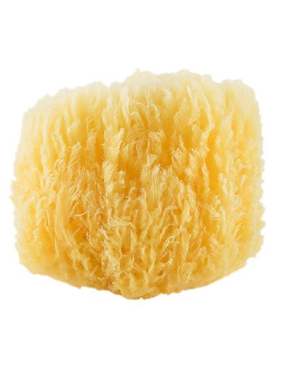 CYPCYP 混合油性肌天然海绵海藻吸水家用控油洁面扑CT2 洁面 沐浴 控油 温和清洁
