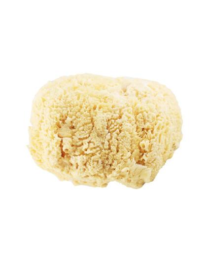 CYPCYP 天然海绵海藻家用吸水儿童沐浴洗澡球CT3 沐浴 控油 温和清洁