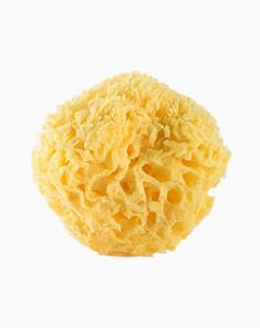 CYPCYP 敏感肌天然海绵海藻洁面洗脸扑ST1 洁面 控油 温和清洁 泡沫丰富