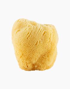 CYPCYP 混合油性肌天然海绵海藻成人洗澡去角质沐浴球CF4 沐浴 去角质 控油